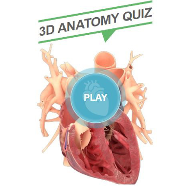 3D Anatomy Quiz
